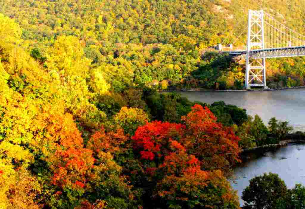 Best Places to Check Out Fall Foliage