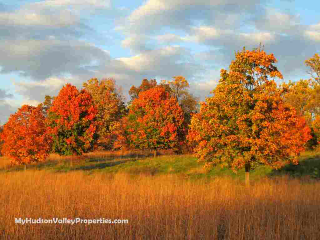 Fall in the Hudson Valley