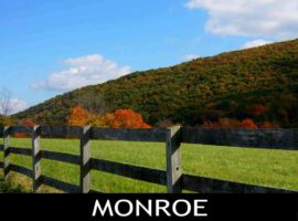 Monroe NY Real Estate