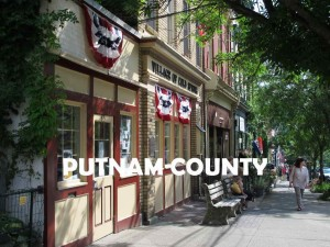 SEARCH HGMLS IN PUTNAM COUNTY