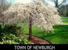 Town of Newburgh, NY Homes for Sale